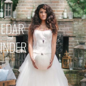 CEDAR AND CINDER :: A Modern, New Orleans-Inspired Cinderella Story