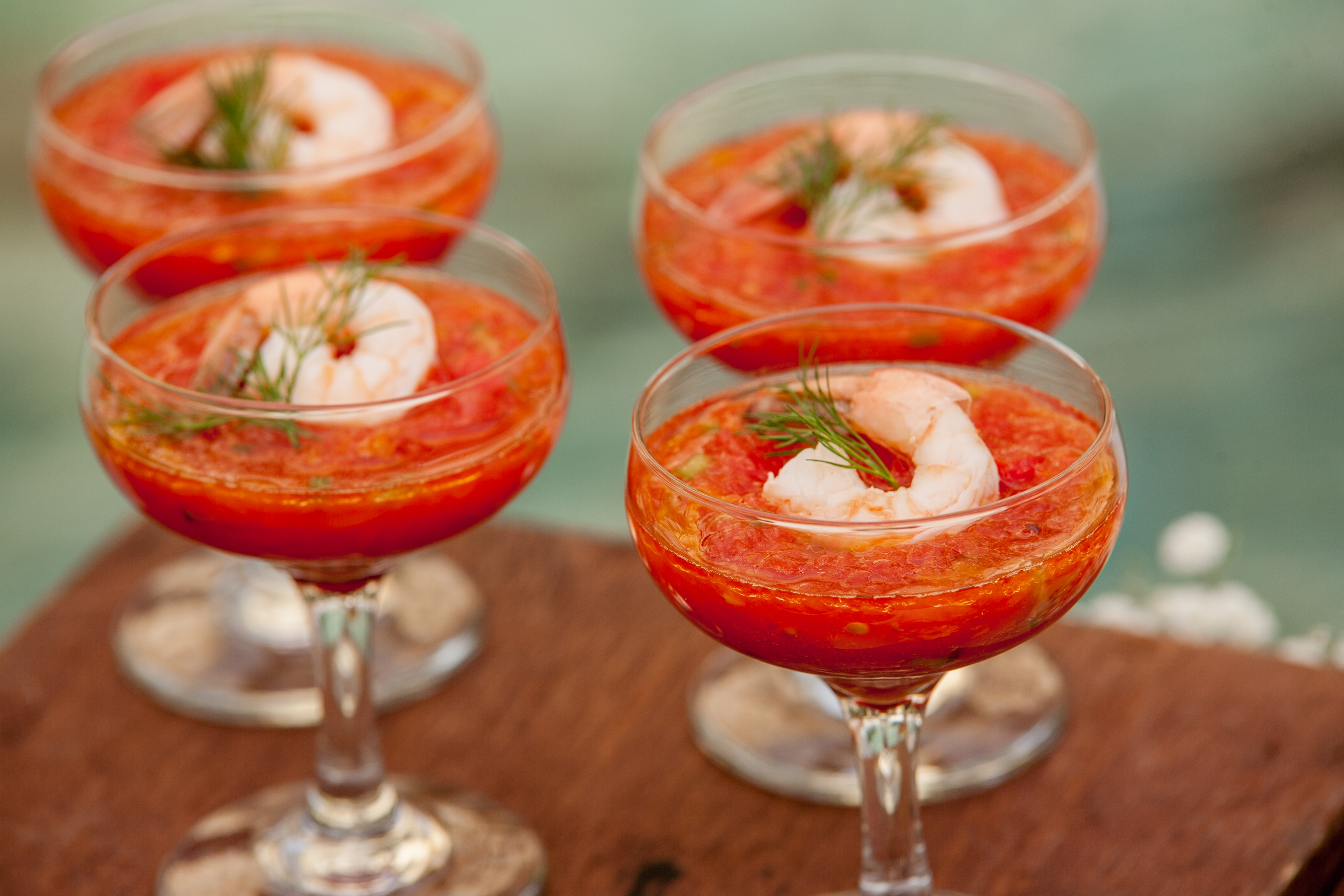 Shrimp cocktails in champagne coupes by Pigeon Catering. Photo: Jessica The Photographer