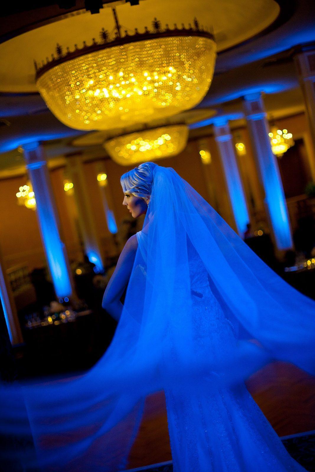 Something Blue Fashion and Decor