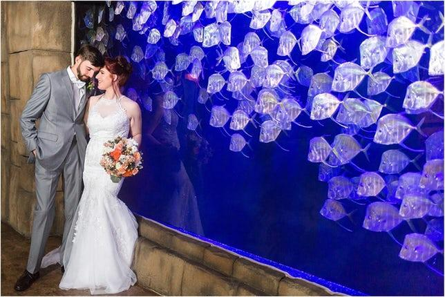 A bride and groom pose by the floor to ceiling tanks at the Aquarium. Photo: Studio Lund