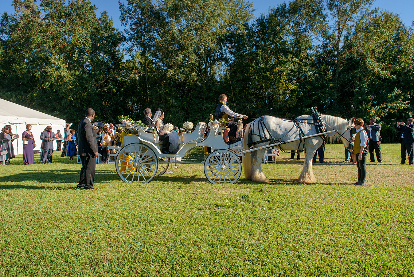A horse drawn carriage carried Doliecha to the wedding ceremony.