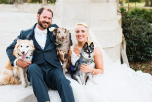 Kate and Jeremy pose for a wedding portrait with their dogs.