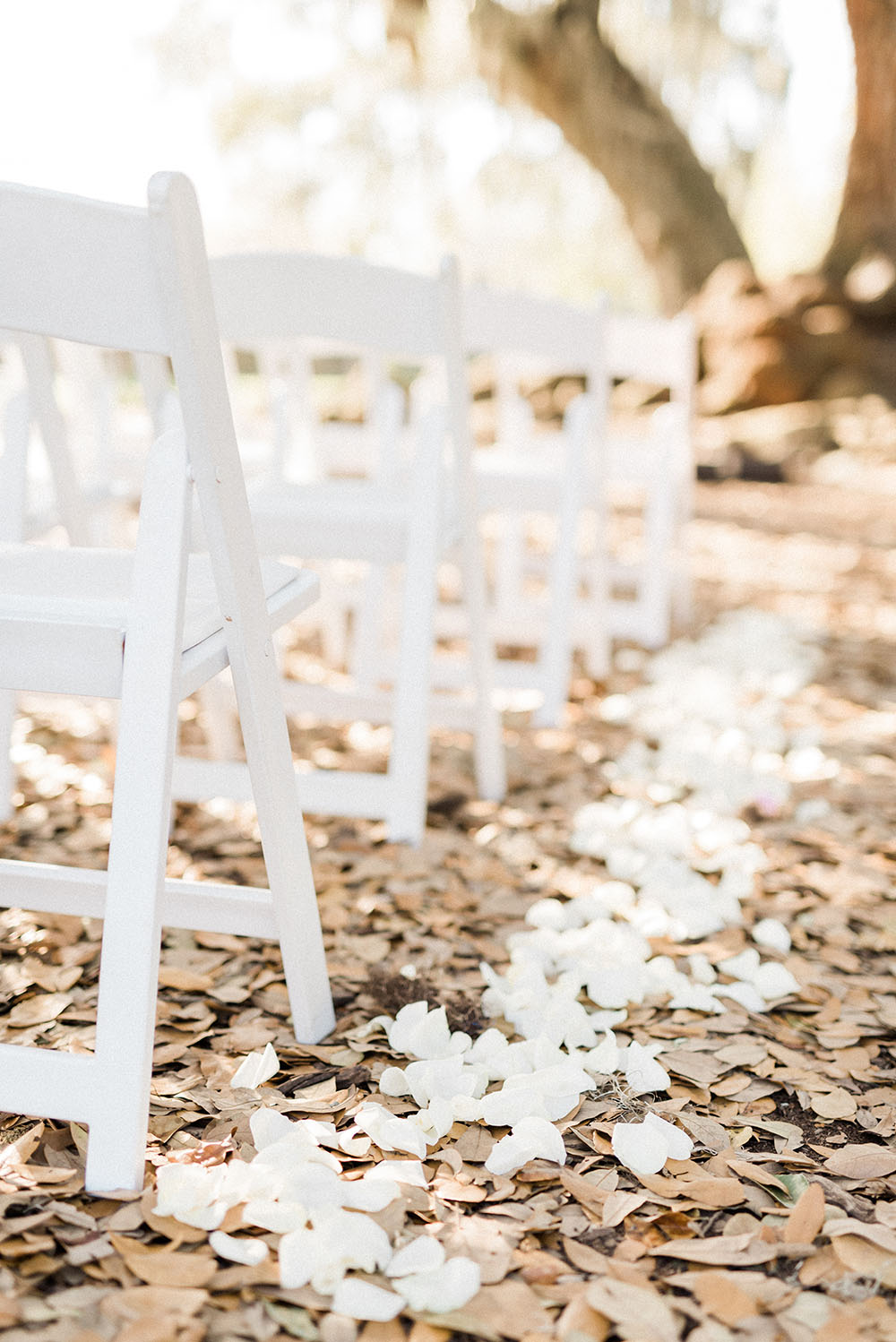outdoor wedding ceremony floral lined aisle