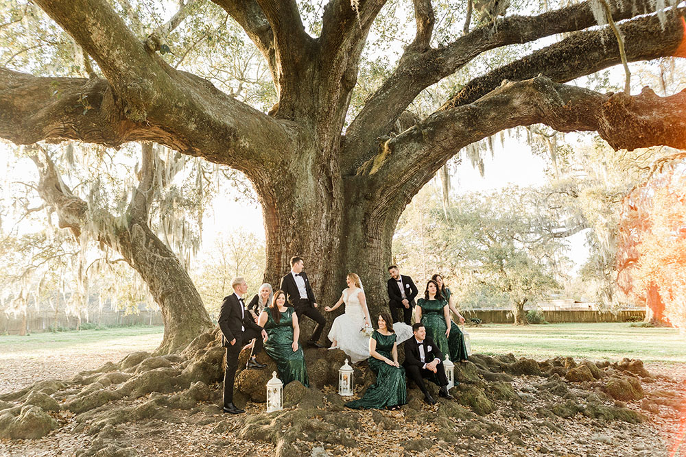 Bride, groom and bridal party pose for a picture in front of the Audubon Tree of Life