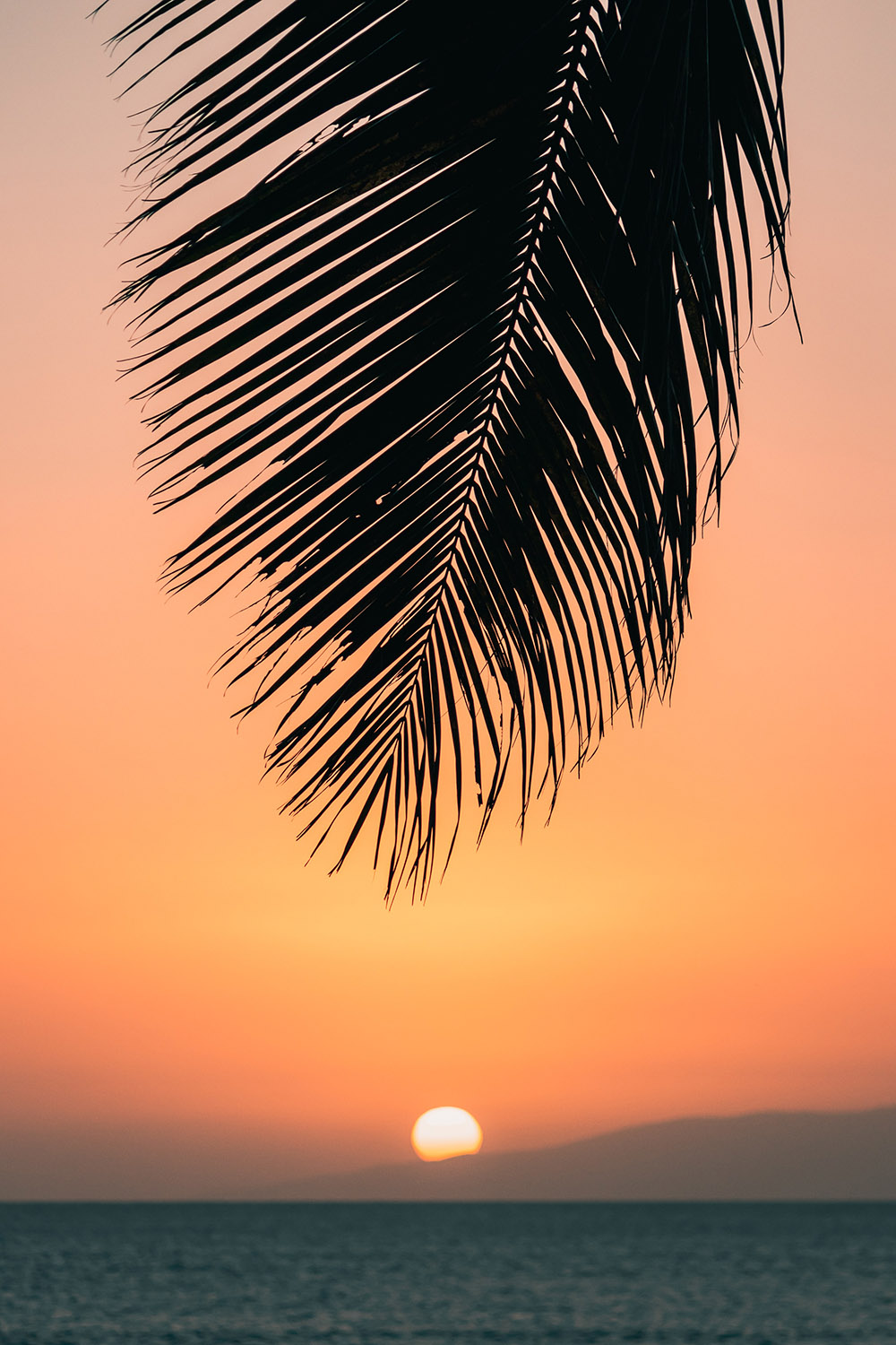 Sunset in paradise Photo: unsplash