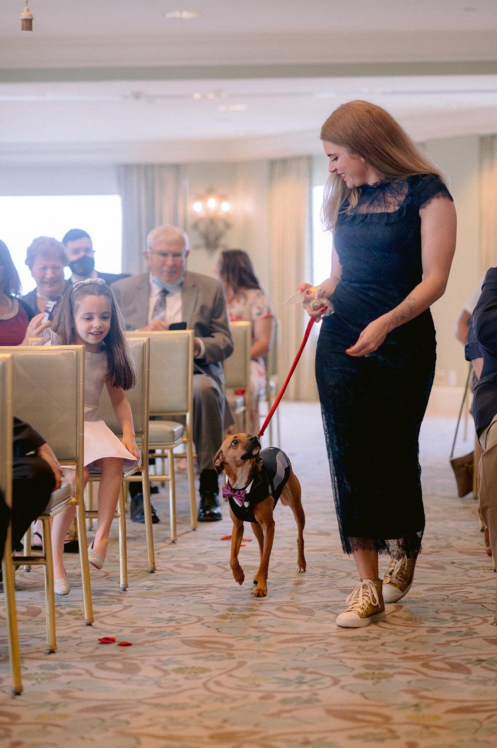 the groom's dog walks down the aisle